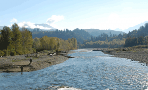 """Chilliwack River Fishing"" image courtesy of Picture BC"