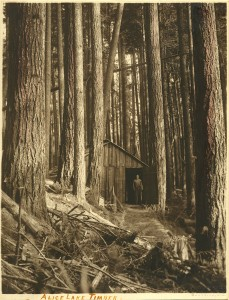 Alice Lake Timber, Ben W. Leeson album